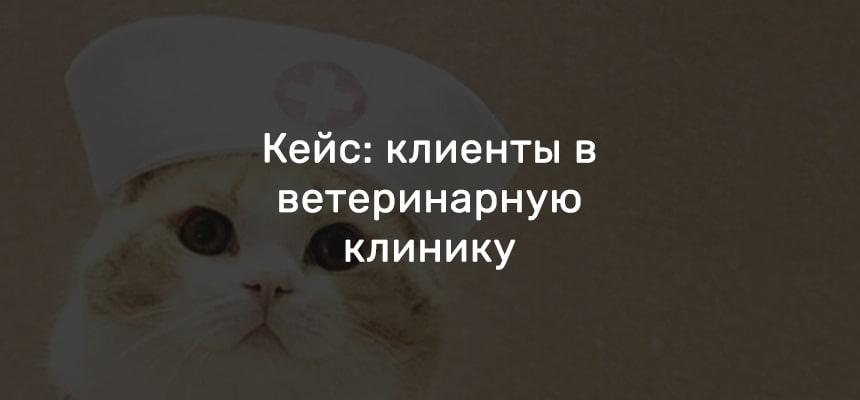 1913 обращений по 715 рублей за 1 год для ветеринарной клиники в Москве